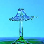 Nightshade Water Droplet Art Print
