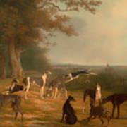 Nine Greyhounds In A Landscape Art Print