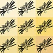 Nine Shades Of Vanilla Art Print