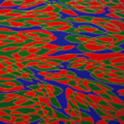 Ninfee Art Print
