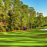 No. 10 Camellia 495 Yards Par 4 Art Print