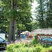 Nooksack City Park Art Print