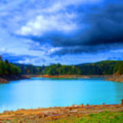 North Alder Lake Art Print