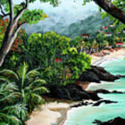 North Coast Tobago Art Print