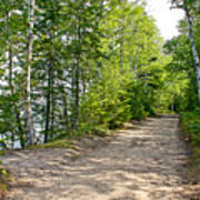 North Country Trail In Pictured Rocks National Lakeshore-michigan  Art Print