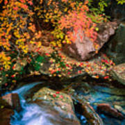 North Creek Fall Foliage Art Print