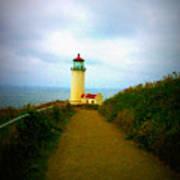 North Head Lighthouse V Art Print