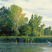 North Of The Grade-great Egret Art Print