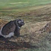 North Of The Utukok River Art Print