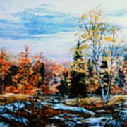 Northern Gold Art Print