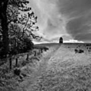 Northern Ireland 35 Art Print