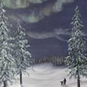 Northern Lights 2  Art Print