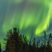 Northern Lights Sapmi Forest Karasjok Norway Art Print