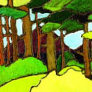 Northern Pathway Art Print
