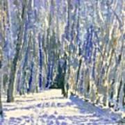 Norwalk River Valley Trail Art Print