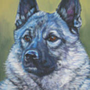 Norwegian Elkhound Art Print