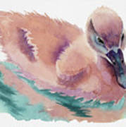 Not An Ugly Duckling Art Print