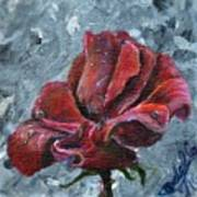 Not Every Rose Is Perfect Art Print