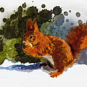 Not Much Goes On In The Mind Of A Squirrel Art Print