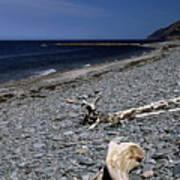 Nova Scotia Pebble Beach Art Print