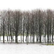 November Flood 2 Art Print