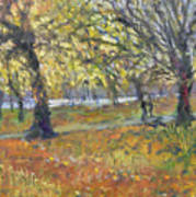 November In Hyde Park Art Print