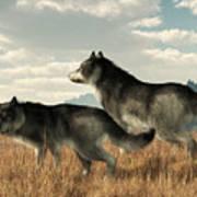 November Wolves Art Print