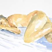 Nude Serie Art Print by Eugenia Picado