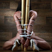 Nude, Tied To A Bamboo Tube - Fine Art Of Bondage Art Print by Rod Meier