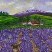 Nui In Lavender Field Art Print