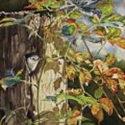 Nuthatch And Creeper Art Print