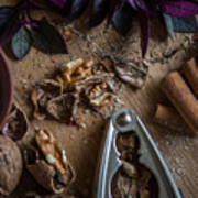 Nuts And Spices Series - Four Of Six Art Print