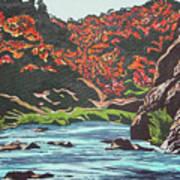 Nyangombe River Art Print