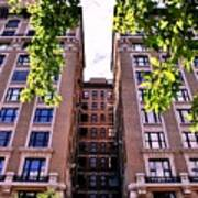 Nyc Building With Tree Overhang Art Print