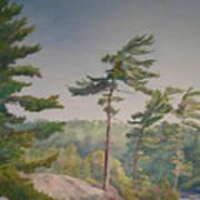 O Canada No.1 Art Print