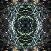Oa-4924 Art Print