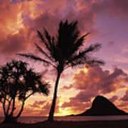 Oahu, Mokolii Island Art Print
