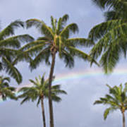 Oahu, Rainbow Art Print