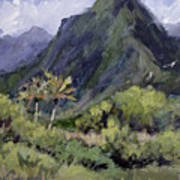 Oahu Valley Print by L Diane Johnson