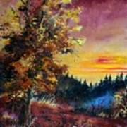 Oak At Sunset Art Print