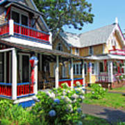 Oak Bluffs Gingerbread Cottages 1 Art Print