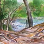 Oak Creek In Sedona Art Print