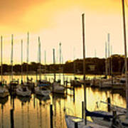Oak Point Harbor Art Print