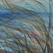 Ocean Grasses In The Wind Art Print