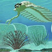 Ocean Opabinia Art Print