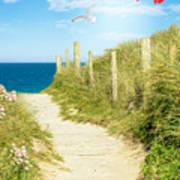 Ocean Path In Cornwall Art Print