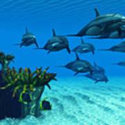 Ocean Striped Dolphins Art Print