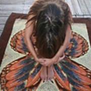 Ochopee Fl. Butterfly Art Print