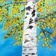 October Birch Art Print