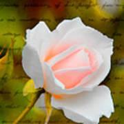 Ode To A Rose Art Print